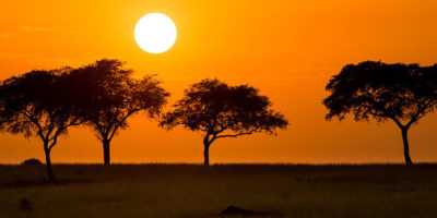 Best Time to Visit Uganda on Safari | Sunset in Murchison Falls National Park | Realm Africa Safaris | Journeys of Distinction...