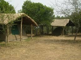 bushlodge tents