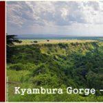 Kyambura gorge – Queen Elizabeth National park – Uganda