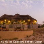 Things to do and See at Kasenyi Safari Camp – Queen Elizabeth Park