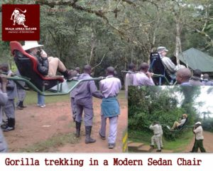 SPECIAL NEEDS GORILLA TREKKING SAFARIS FOR DISABLED PERSONS