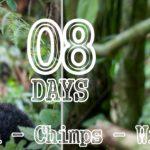 8 Days Uganda Gorilla – Chimps – Wildlife Safari Holiday