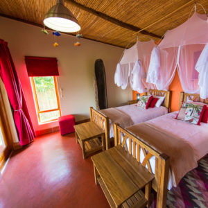 Chameleon Hill Lodge - Mountain gorilla habituation Experience in Uganda - Lodges In Bwindi Forest