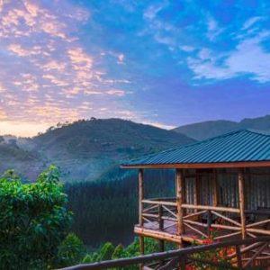 Mountain Gorilla habituation Experience in Uganda - Lodges In Bwindi Forest