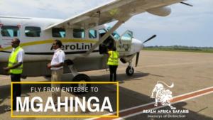 Getting to Mgahinga Gorilla Park