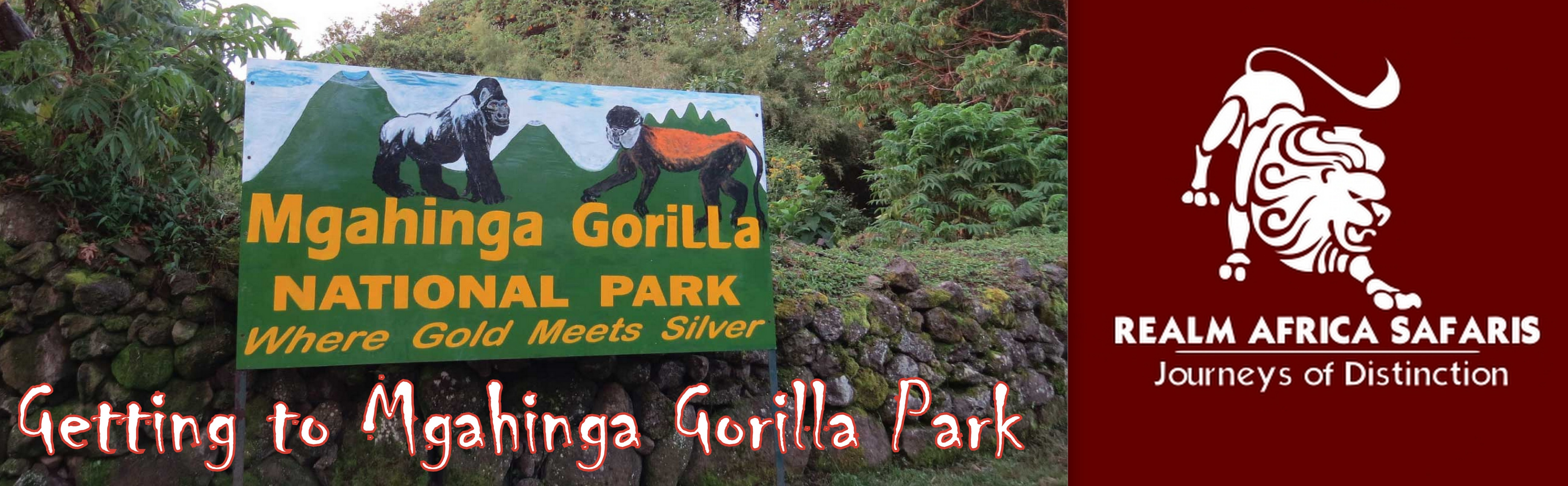 Getting to Mgahinga Gorilla Park | Realm Africa Safaris™