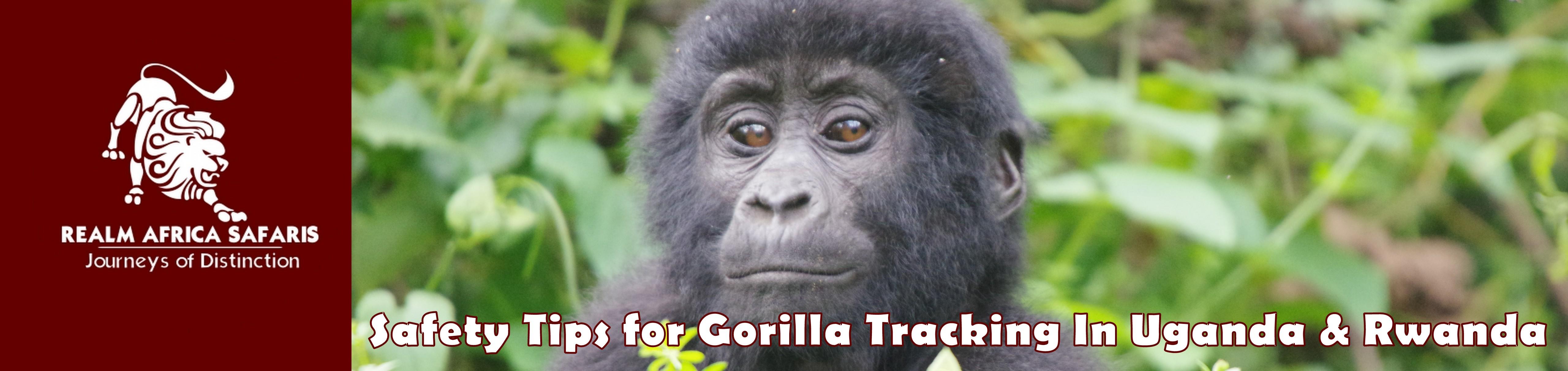 safety Tips for Gorilla tracking In Uganda & Rwanda